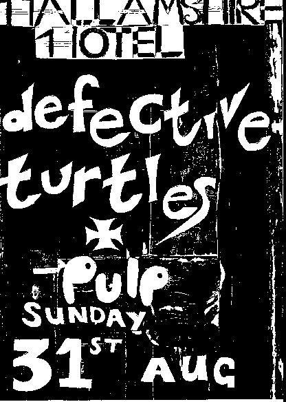 defective turtles with pulp